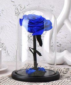 Belle Et La Bête Rose Éternelle